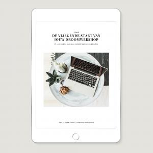 Wonderzoet Works – E-book De vliegende start van jouw webshop